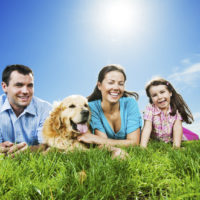 Cheerful family lying in the meadow with their golden retriever dog.   [url=http://www.istockphoto.com/search/lightbox/9786778][img]http://dl.dropbox.com/u/40117171/family.jpg[/img][/url]  [url=http://www.istockphoto.com/search/lightbox/9786750][img]http://dl.dropbox.com/u/40117171/summer.jpg[/img][/url]  [url=http://www.istockphoto.com/search/lightbox/9786797][img]http://dl.dropbox.com/u/40117171/people-animals.jpg[/img][/url]